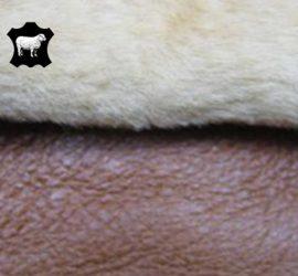 Pecari-Camel-tone-tone-250x250_